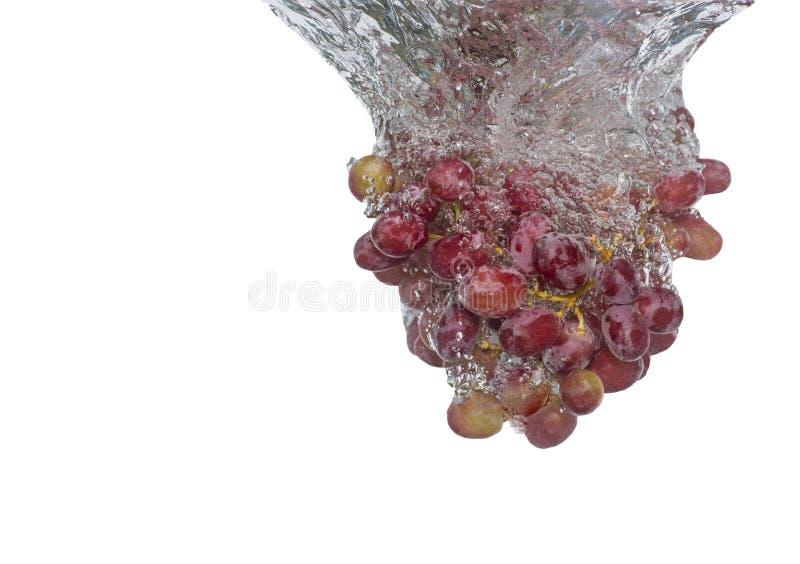 Выплеск виноградин стоковое изображение rf