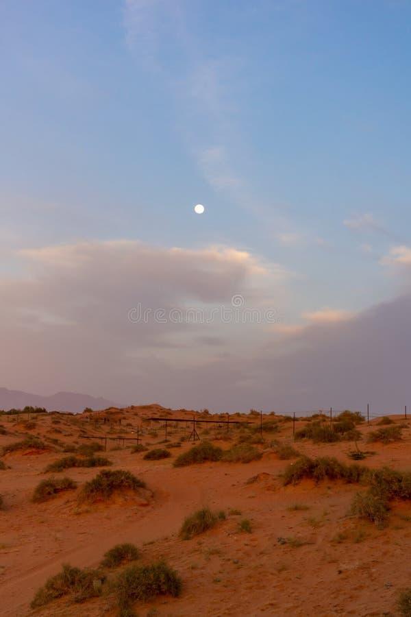 Выравнивающ заход солнца в песчанных дюнах пустыни Объениненных Арабских Эмиратов с голубым небом, облаками, и луной светя ярко с стоковое изображение rf