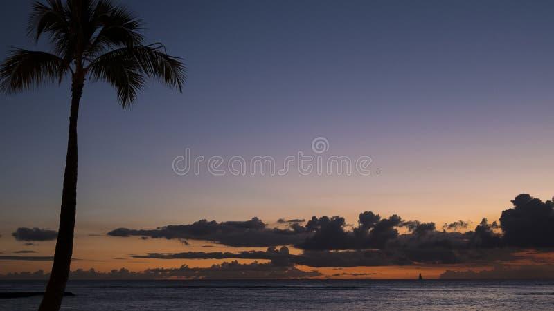 Выравнивающ тропическое небо с silhouetted пальмой кокоса к левому и широко раскройте взгляды к океану, и драматическое небо стоковые фото