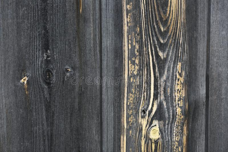 Выразительная деревянная текстура стоковое фото