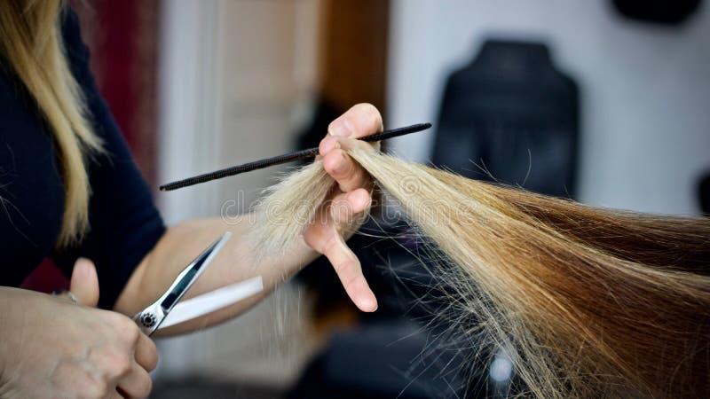 Вырезывание волос в салоне красоты стоковая фотография rf