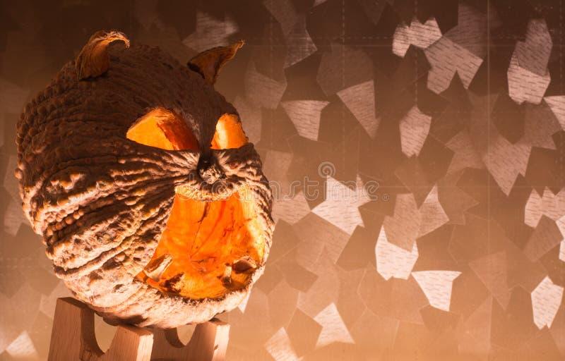 высеканная тыква halloween стоковые изображения