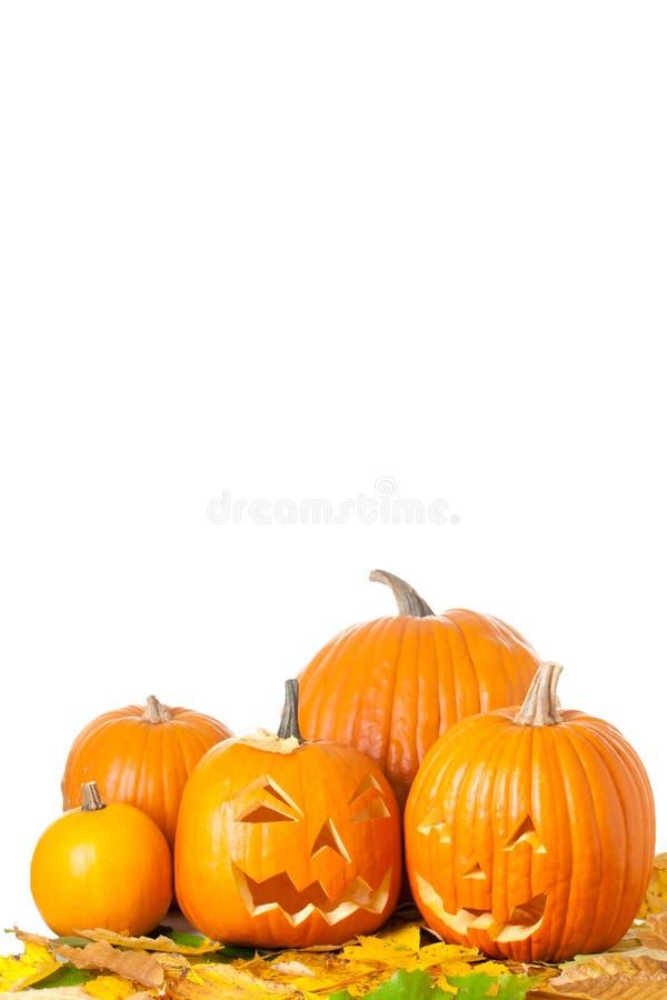 высеканные фонарики o jack halloween стоковые фото
