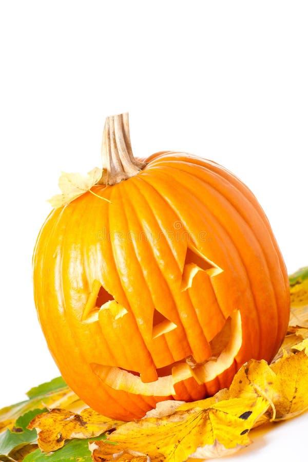 высеканный фонарик o jack halloween стоковая фотография