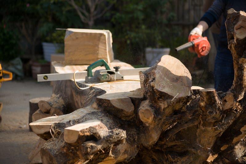 Download высекать Дерев-корня стоковое фото. изображение насчитывающей строя - 81807012