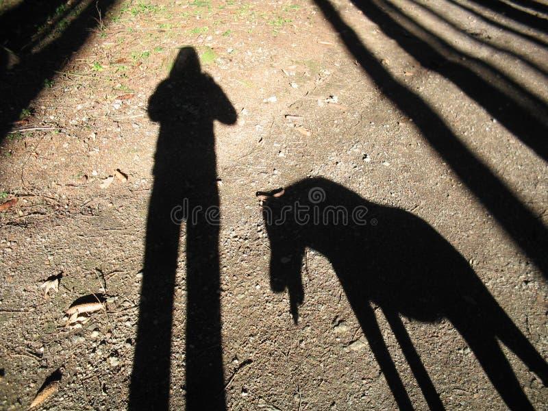 выследите мою тень s стоковое фото rf