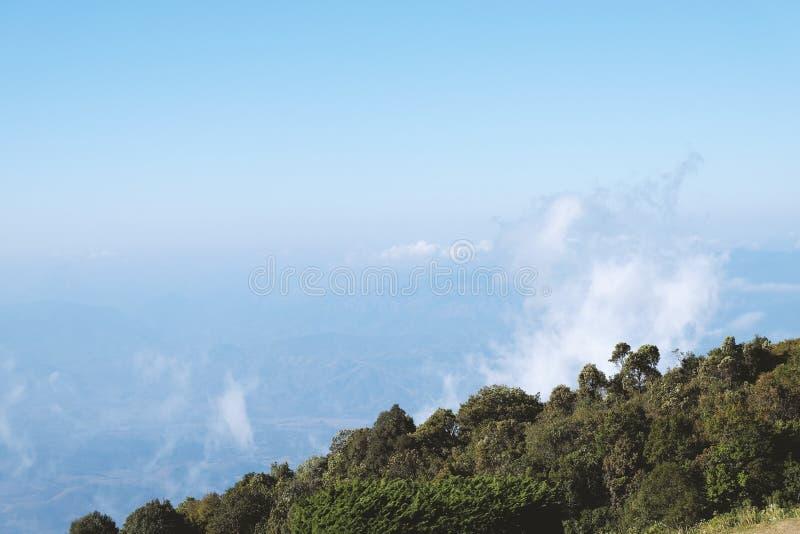 Высокая гора в утреннем времени стоковое фото rf