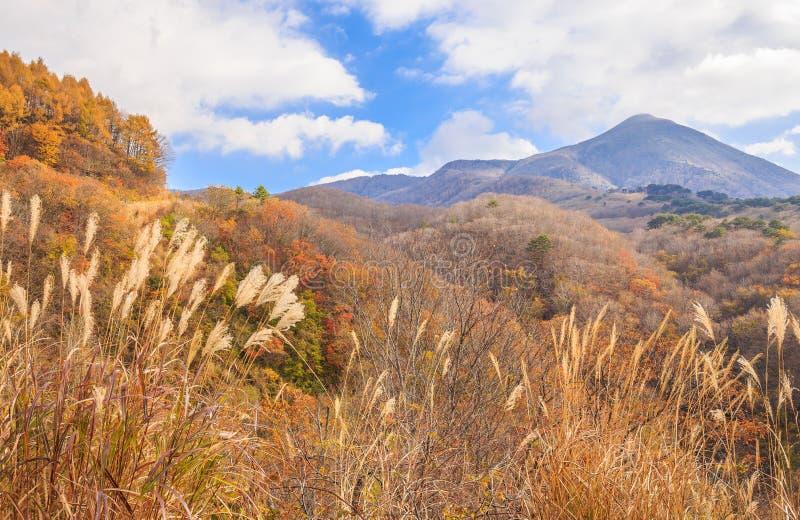 Высокая гора с голубым небом в осени в линии дороге золота Bandai-Сан - Bandai, Фукусима, Японии стоковые фотографии rf