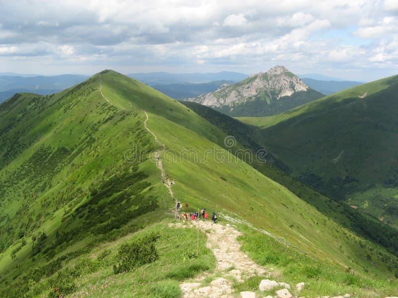 высокая гора стоковое фото