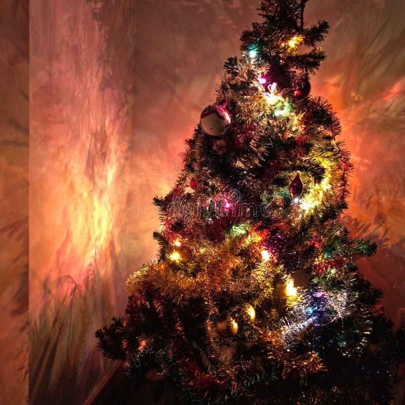 Высокая деталь светов и теней рождественской елки стоковое изображение