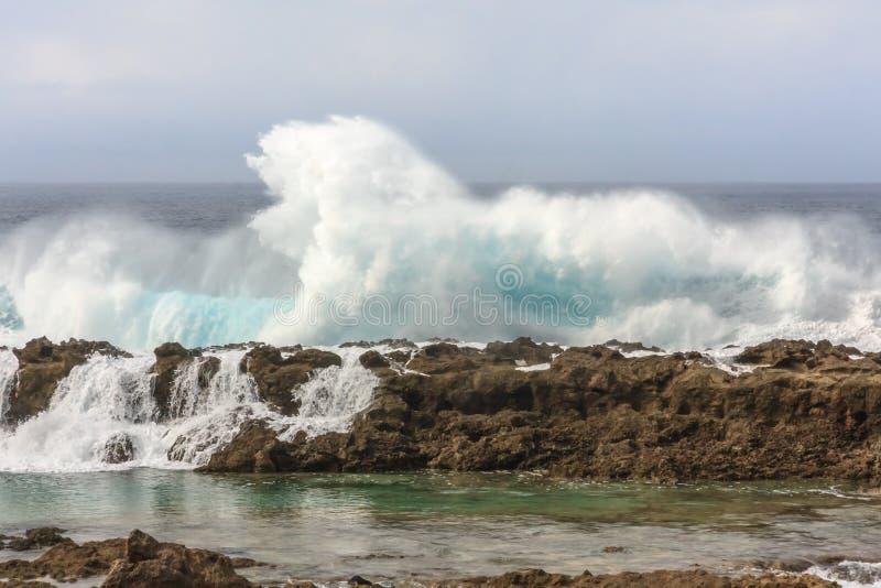 высокие волны стоковые фото