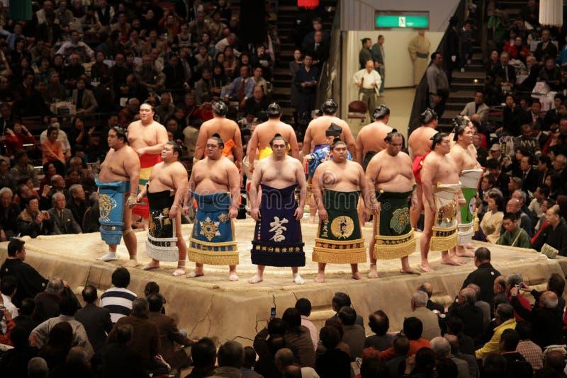 высокие выровнянные выстраивая в ряд борцы sumo поднимающие вверх радушные стоковые изображения rf