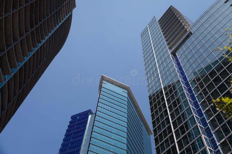Высокие здания в городе стоковое изображение rf