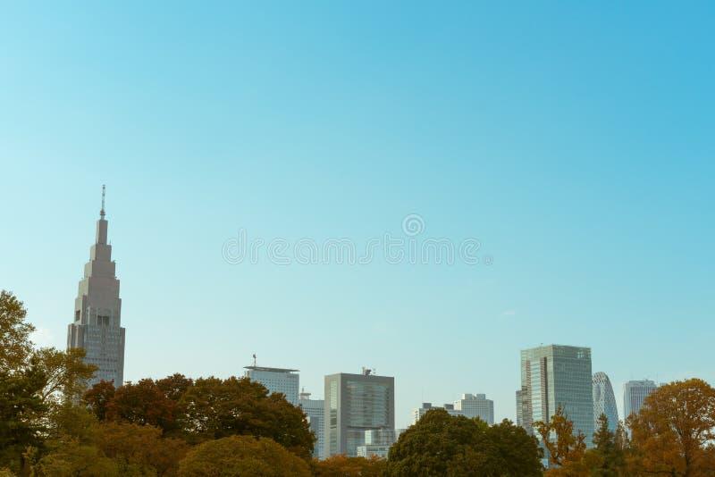 Высокие здания увиденные от сада Shinjuku Gyoen национального во время осени в токио, Японии стоковое фото rf