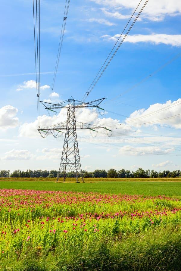 Высокие линии напряжений тока и опора силы в сельском районе стоковое фото rf