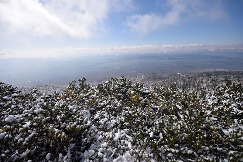 высокие tatras Словакии стоковая фотография