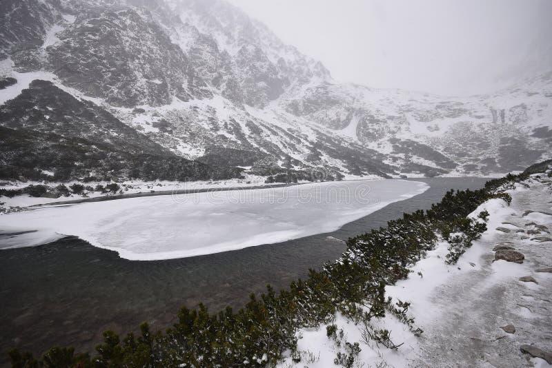 высокие tatras Словакии стоковые фото