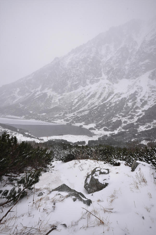 высокие tatras Словакии стоковое фото