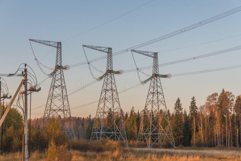 Высоковольтные линии электропередач в лесе среди деревьев стоковое фото rf