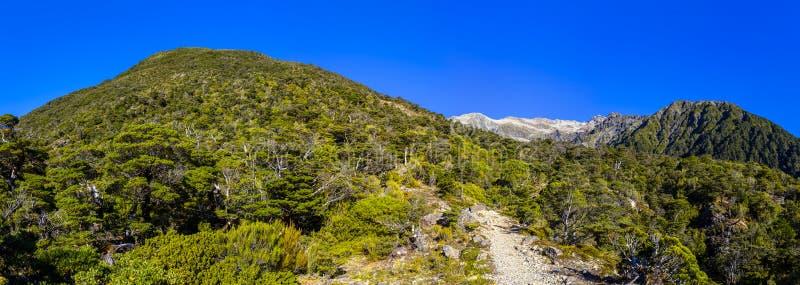 Высокогорная окружающая среда горы в Новой Зеландии стоковое изображение