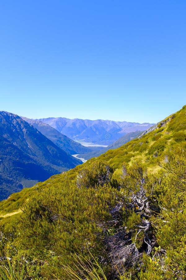 Высокогорная окружающая среда горы в Новой Зеландии стоковые изображения rf