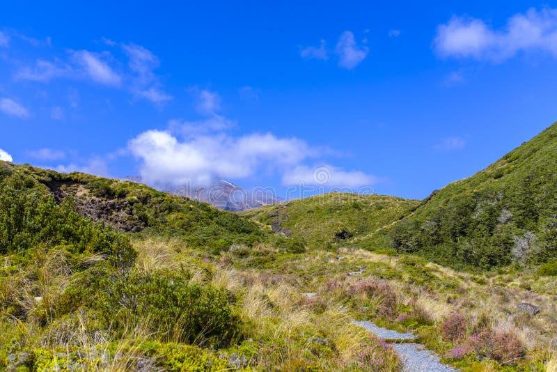 Высокогорная окружающая среда национального парка Tongariro стоковые фотографии rf