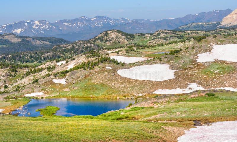 Высокогорное озеро вдоль шоссе Beartooth Парк Йеллоустона, пики гор Beartooth, национального леса Шошон, Вайоминга, США стоковое фото rf