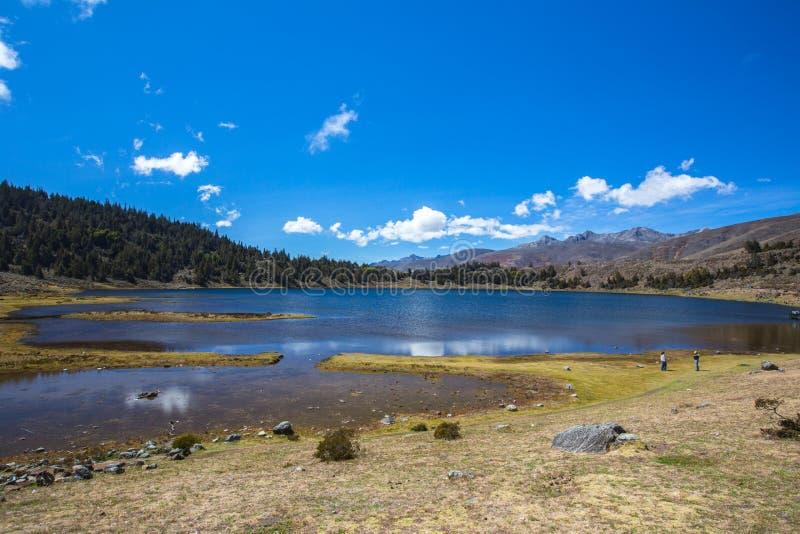 высокогорное озеро Мерида Венесуэла стоковое изображение rf