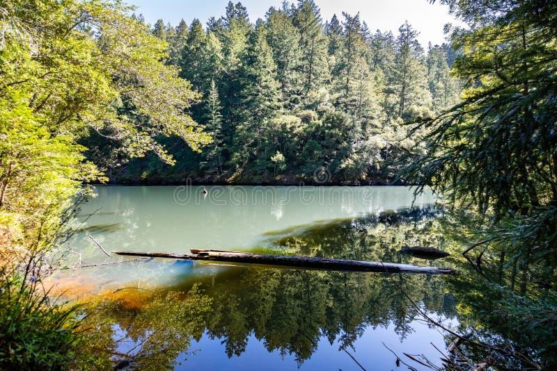 Высокогорное озеро на солнечный день, область Marin County, северная San Francisco Bay, Калифорния стоковое изображение rf