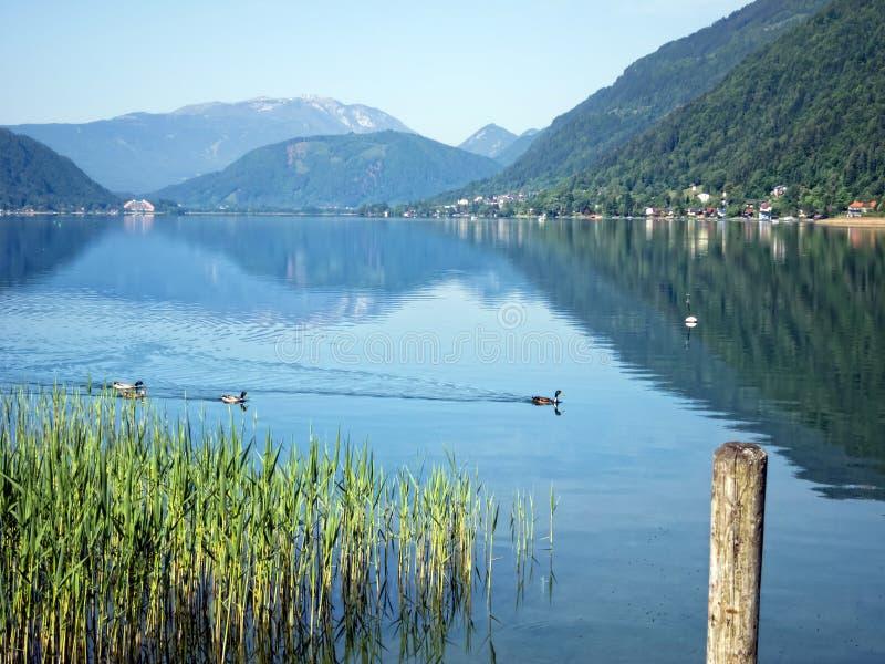 Высокогорное озеро стоковые фотографии rf