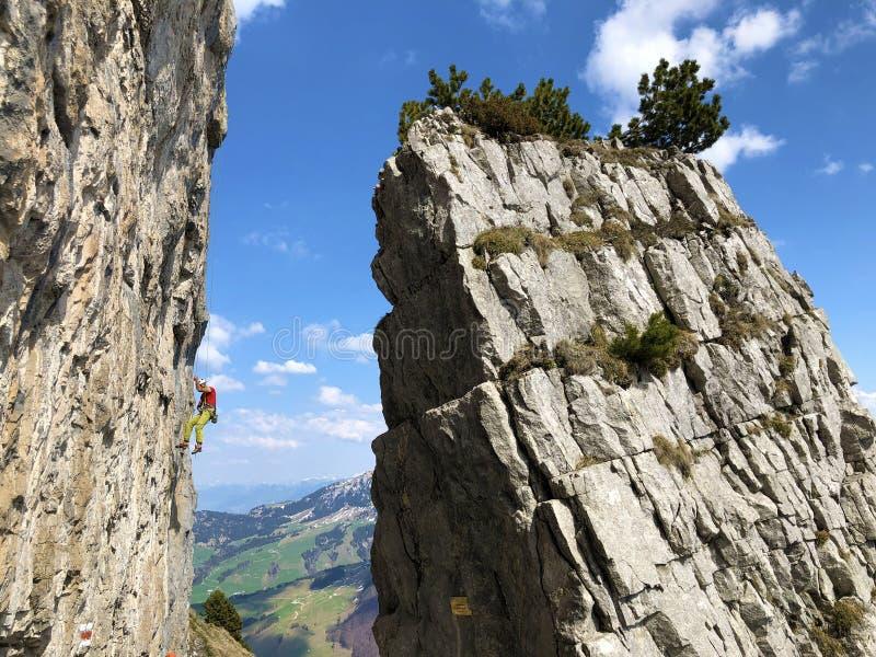 Высокогорные альпинисты на скалах горы Ebenalp в регионе Appenzellerland и горной цепи Alpstein стоковое фото rf