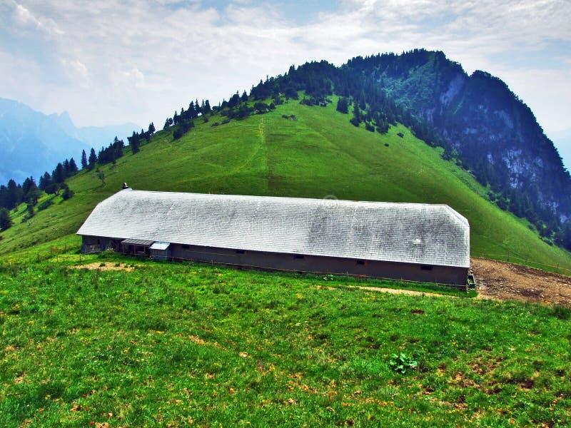 Высокогорные фермы и конюшни поголовья на наклонах горной цепи Churfirsten в регионе Toggenburg стоковая фотография rf