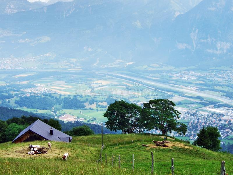 Высокогорные фермы и конюшни поголовья на наклонах горной цепи Churfirsten в регионе Toggenburg стоковые фотографии rf