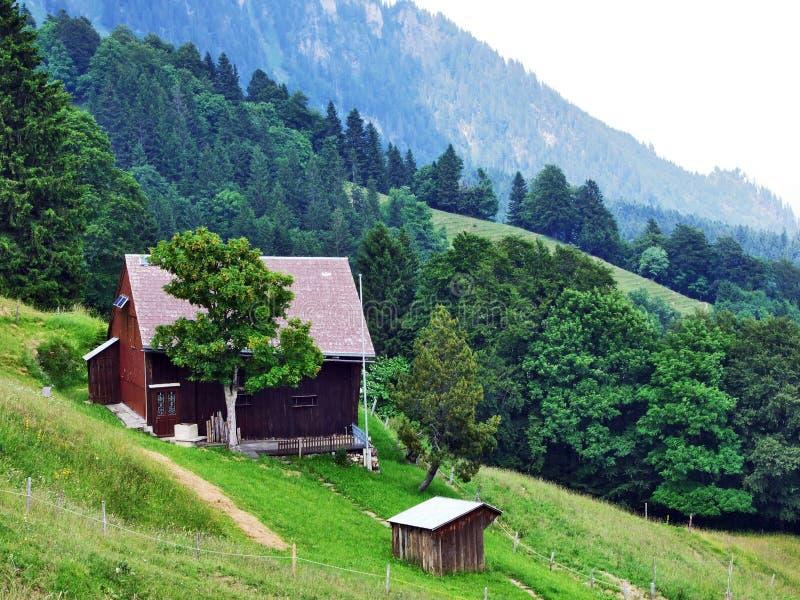 Высокогорные фермы и конюшни поголовья на наклонах горной цепи Churfirsten в регионе Toggenburg стоковое изображение rf