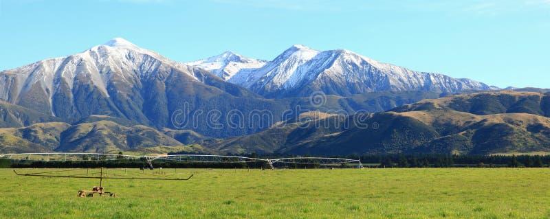 высокогорные alps Новая Зеландия стоковое изображение
