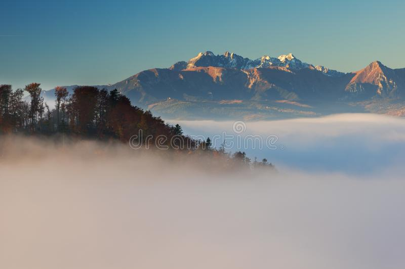 Высокое Tatras от Pieniny стоковое фото rf