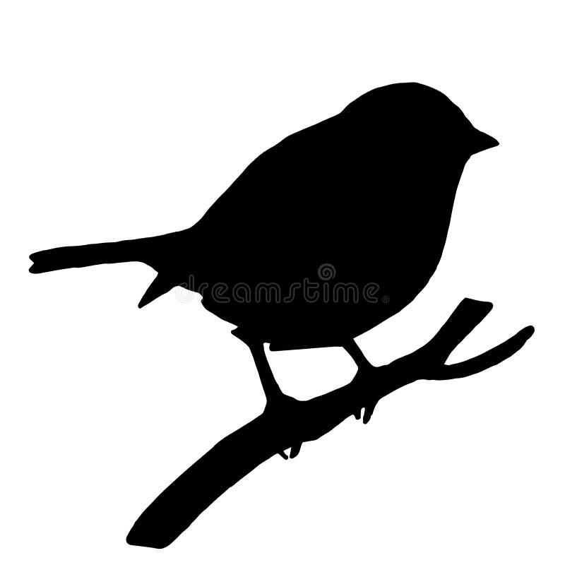 Высококачественная птица силуэта на ветви золы иллюстрация вектора