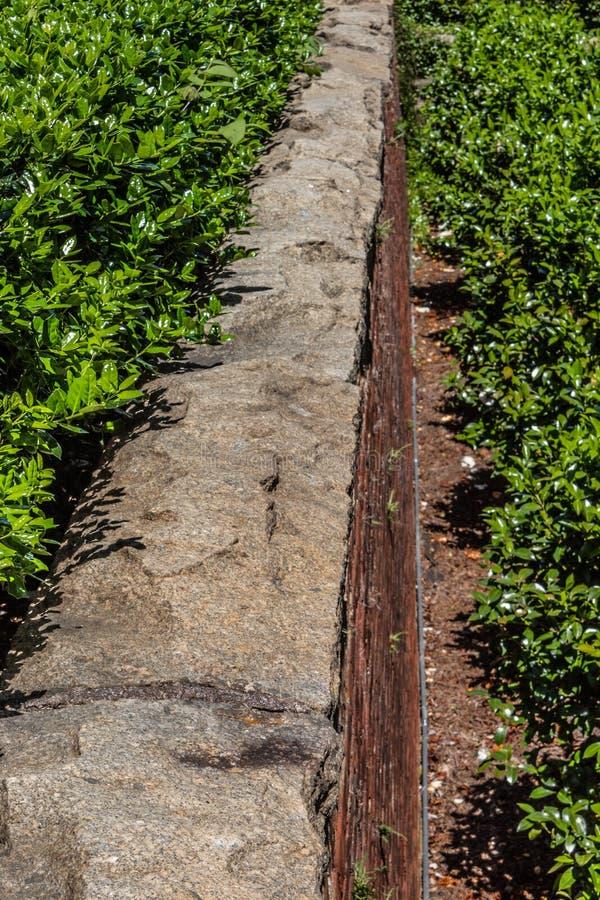 Высокорослая подпорная стенка красного кирпича с rusticated каменной крышкой стоковые фото