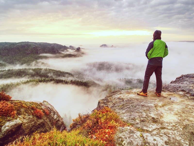 Высокорослый парень с руками в карманн в голубом положении рубашки и наблюдает горизонт стоковое фото rf