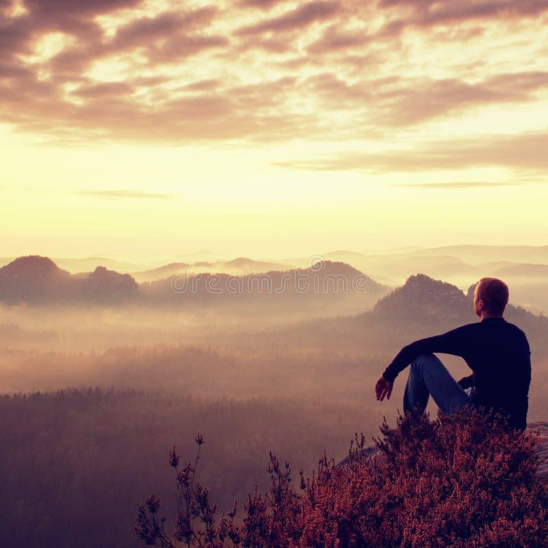 Высокорослый hiker в темной рубашке сидит на кустах вереска rockatn, наслаждается туманным пейзажем утра стоковые фотографии rf