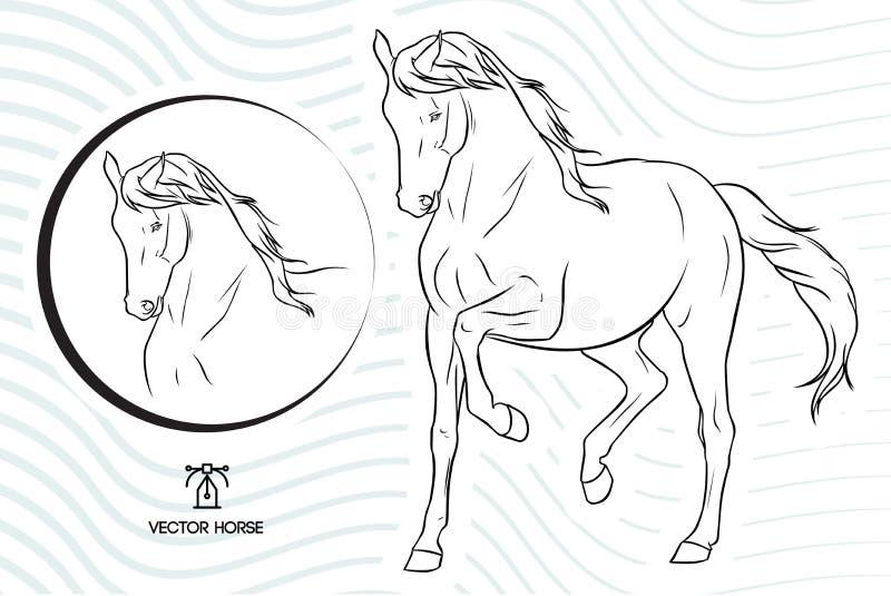 Выставка лошади вектора силуэта идя - плюс сторона лошади внутри круг - с вектором развевает предпосылка бесплатная иллюстрация