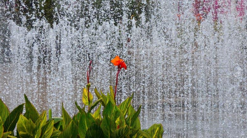 Выставка работ воды Тайваня стоковые фотографии rf