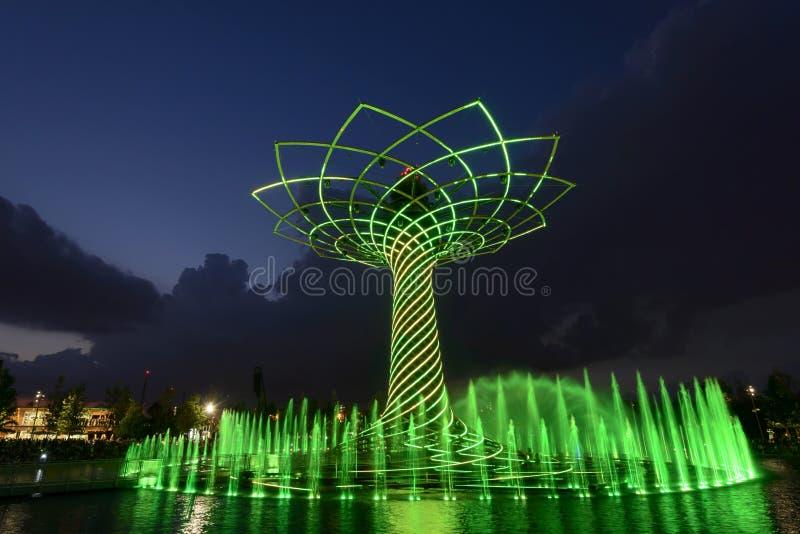 Выставка света ночи на дереве жизни 04, милан 2015 ЭКСПО стоковое фото