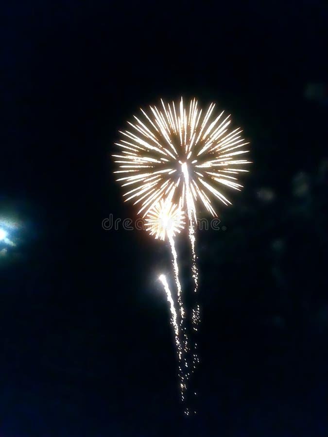 Выставка фейерверков празднует предпосылку ночи стоковые фото