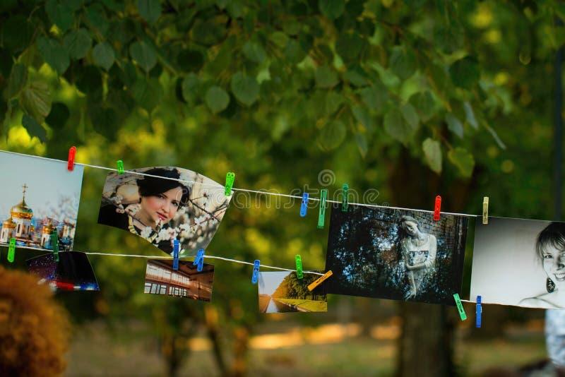 Выставка фото стоковое изображение