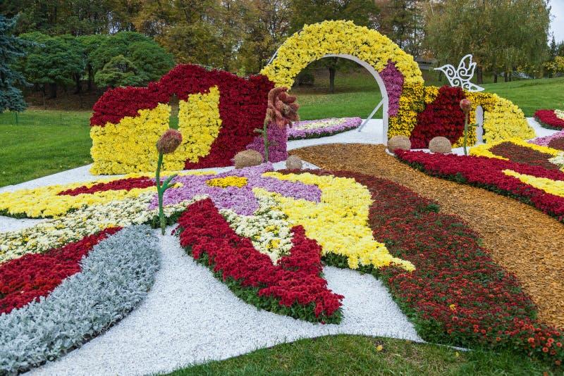 Выставка хризантем стоковое изображение rf