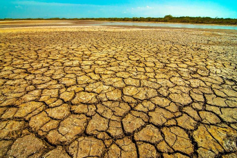 Высушенная грязь стоковое фото rf