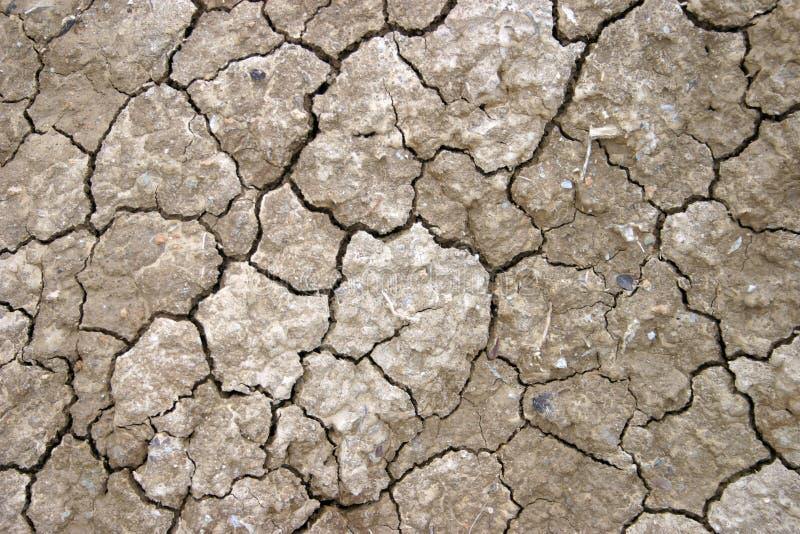 высушенная земля Стоковое Фото