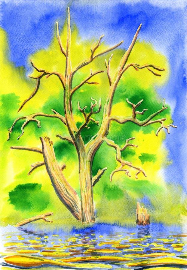 Высушенное старое дерево стоя в воде иллюстрация вектора