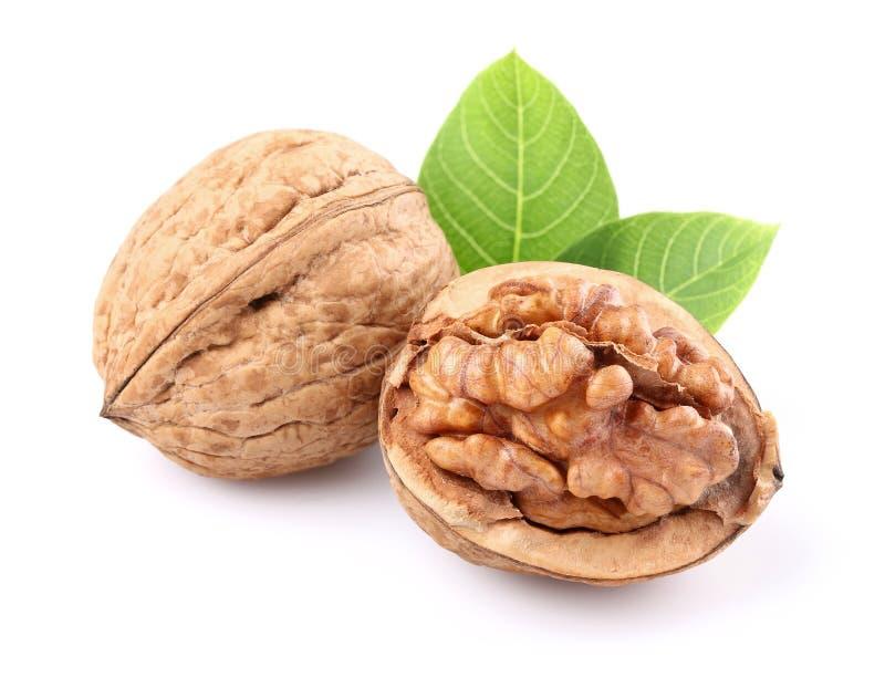 Высушенные грецкие орехи с листьями стоковое фото